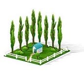 Цены на обработку земельных участков
